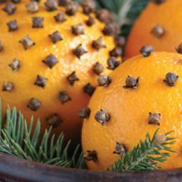 Orange Clove by Scented Nest Candle Making Supply Company