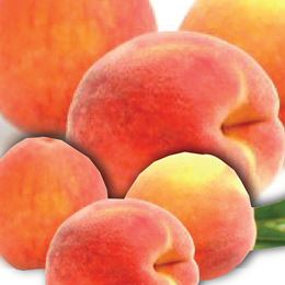 Juicy Peach by Scented Nest Candle Making Supply Company