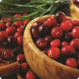 Spiced Cranberry by Scented Nest Candle Making Supply Company