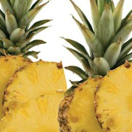 Pineapple Paradise by Scented Nest Candle Making Supply Company